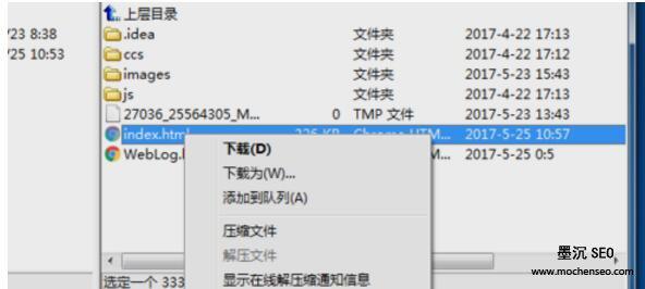 FTP工具文件下载