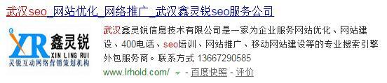 第五名武汉SEO公司1